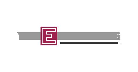 VN Express International