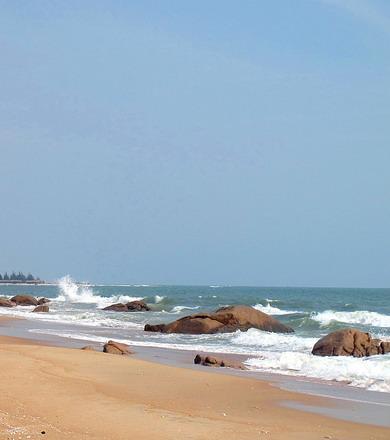 Ho Coc beach, Nature Reserve & Dragon Fruit Farm (1 day)